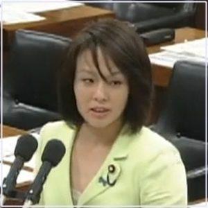 杉田水脈議員2013年5月