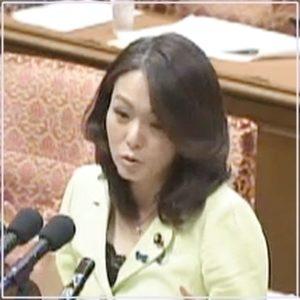 杉田水脈議員2014年4月